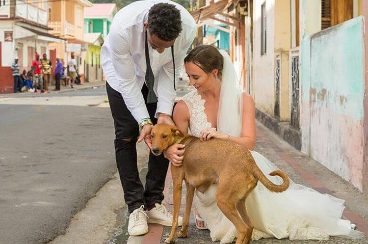 El pasado mes de abril decidieron darse el sí quiero en la Isla caribeña de Santa Lucía, donde cuando realizaron la sesión de fotos un perro callejero se les acercó. (Foto Prensa Libre: Instagram  Ashley Bragg)