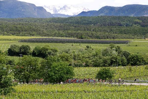 El Giro de Italia vive sus mejores momentos en la montaña. (Foto Prensa Libre: AFP)