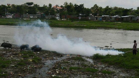 En las zonas endémicas, como esta de India, se suelen hacer fumigaciones para matar a las poblaciones de mosquitos sospechosos de portar el virus. GETTY IMAGES