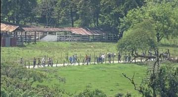 Vista de los bochincheros que ocasionaron los disturbios.