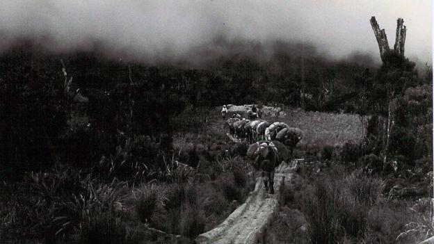 El inicio del conflicto con las Farc marcó el fin del período conocido como La Violencia. (Archivo).