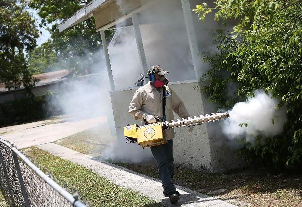 La fumigación sobre el terreno se realiza desde en el condado de Miami-Dade.(AFP)