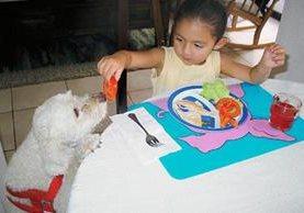 A los niños melindrosos para comer hay que presentarles los platillos de manera atractiva.