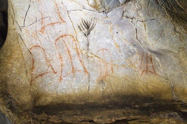 Los gráficos quizá representen elementos de la naturaleza que estos hombres prehistóricos no dibujan de modo figurativo, como bisontes o caballos, dice la científica. D. VON PETZINGER