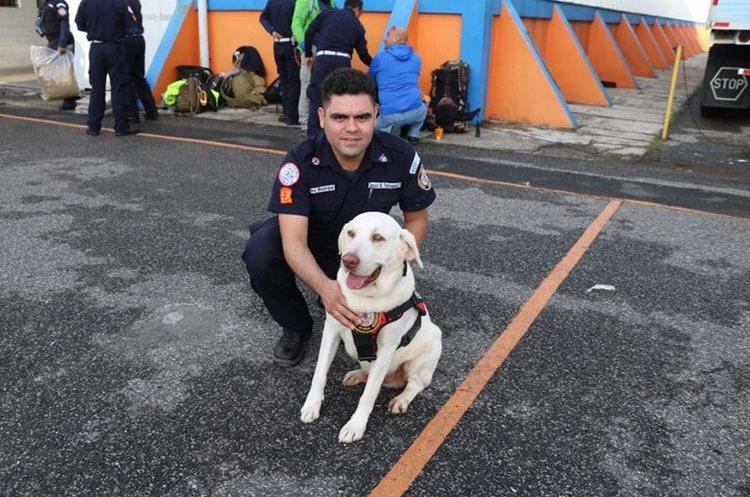 Drago es el oficial canino que poyará en las labores de rescate en México. (Foto Prensa Libre: CBM)