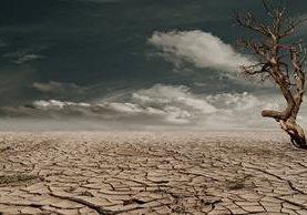 Estudio defiende que las predicciones climáticas estacionales.