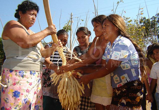 El corozo puede adquirirse en ramitas a un módico precio. (Foto: Hemeroteca PL)