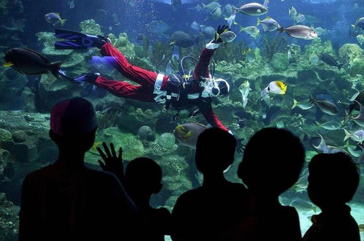Niños observan a un Santa Claus buceando en un acuario de Kuala Lumpur, Malasia.