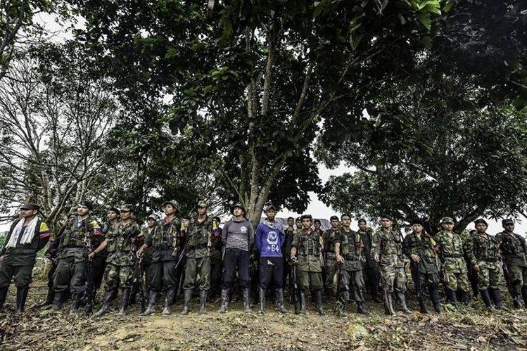 Guerrilleros colombianos comenzaron lucha hace 50 años (AFP)