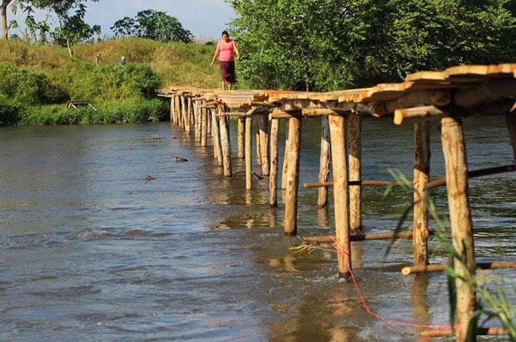 Puente de madera construido en Palo Blanco, Trocha Cuatro.