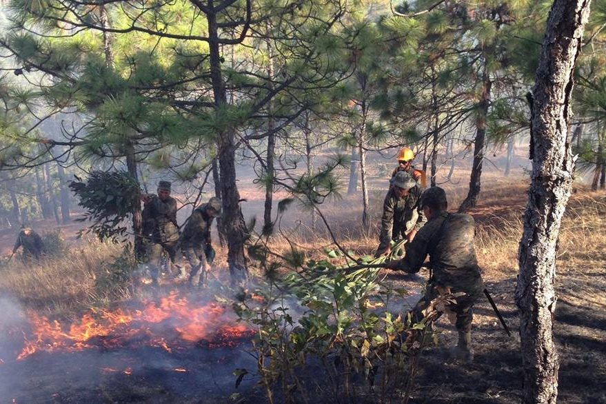El pasto  de los Cuchumatanes es fácil de incendiar, luego del efecto de las heladas. (Foto Prensa Libre: Mike Castillo)