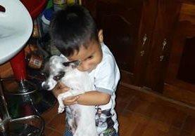 Uno de los niños de la familia Ávila Acosta jugaba con su mascota, Pepe. (Foto Prensa Libre: Cortesía)