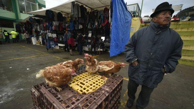 Los huevos son un alimento muy asequible y accesible para las poblaciones que son particularmente vulnerables a la malnutrición. (Getty Images).