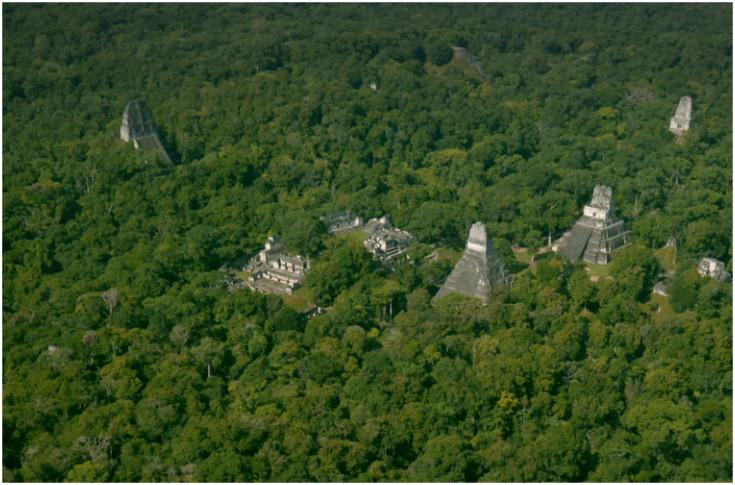 Descubren gigantesca ciudad maya en selva de Guatemala