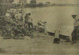 Campesinos de Izabal intentan salvar cosecha de banano afectada por el río Motagua, en septiembre de 1970. (Foto: Hemeroteca PL)