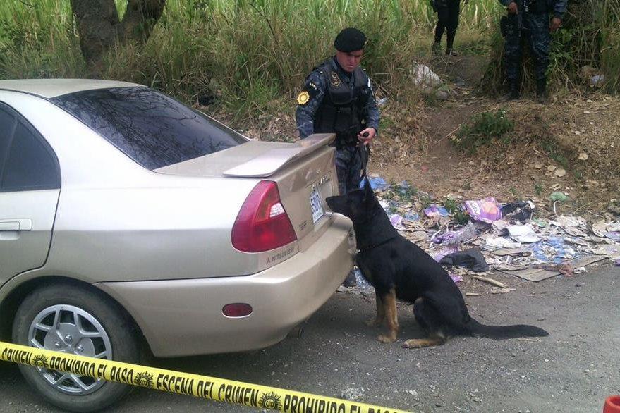 Un perro amaestrado localizó un paquete de droga. (Foto Prensa Libre: PNC)