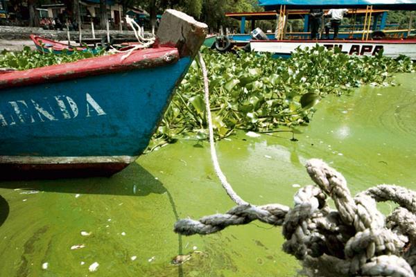 La investigación sigue por parte del MP, para determinar el grado de contaminación que pudo haber causado la sustancia en el Lago de Amatitlán.