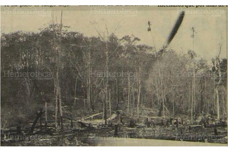 El fuego se propagó a las montañas y los árboles que quedaron de píe morirán irremisiblemente por los daños que les causaron las llamas.7/5/1987.(Foto: Hemeroteca PL)