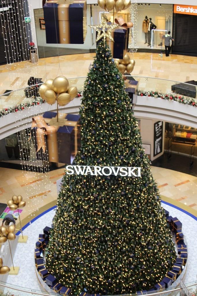 El árbol sobresale entre los comercios. (Foto Prensa Libre: Cortesía)