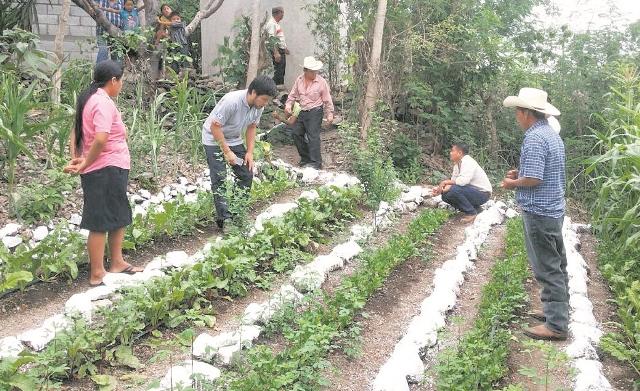 El vicepresidente Jafeth Cabrera afirmó que 300 mil familias son afectadas por la sequía. (Foto Prensa Libre: Hemeroteca PL)