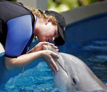 Una entrenadora de delfines besa a un animal en el parque Sea World de Florida donde uno de esos ejemplares arrebató la tablet a una mujer que lo fotografiaba. (Foto Prensa Libre: AP).