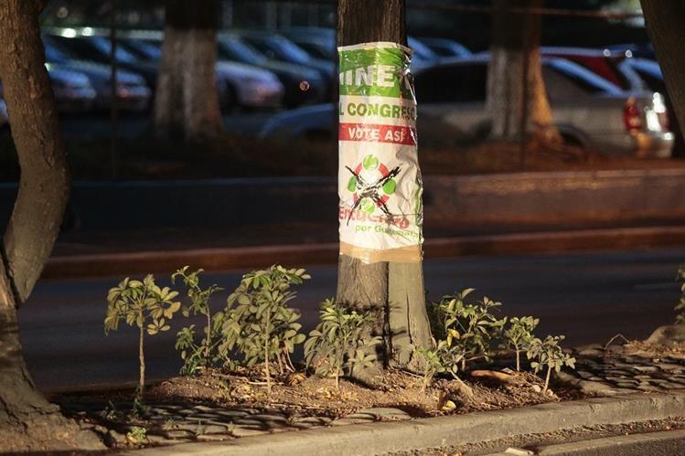 Toda la publicada de los partidos políticos fue retirada de árboles, parques y monumentos. (Foto Prensa Libre: E. Bercian)