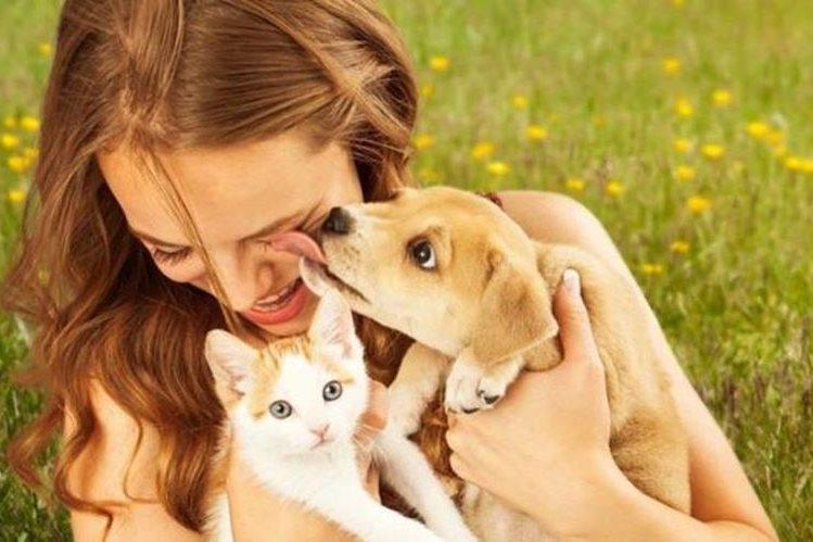Muchos dueños de mascotas consideran a sus animales como miembro de la familia. (THINKSTOCK)