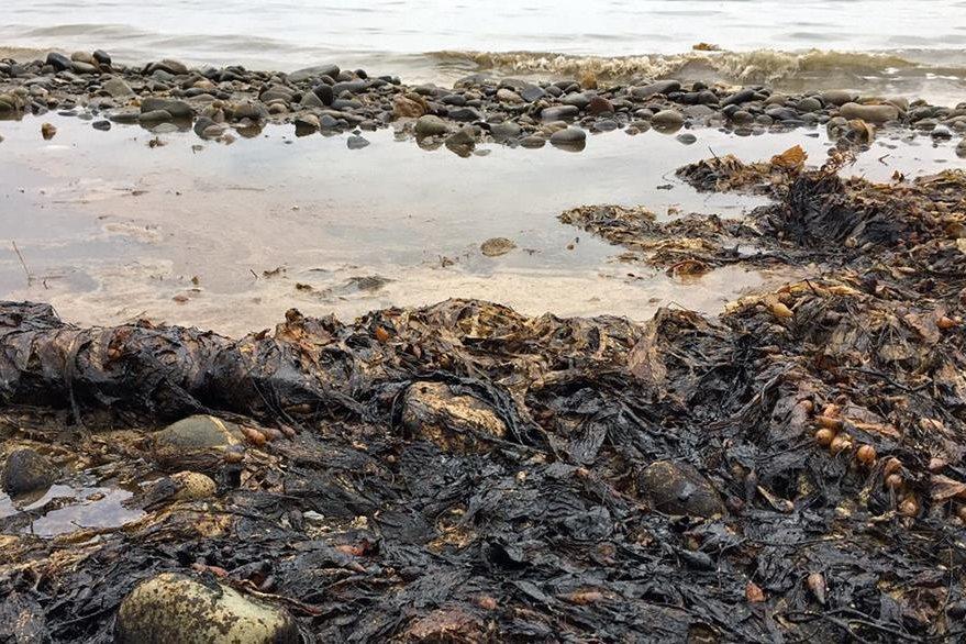La zona tiene antecedentes de filtraciones naturales de petróleo del fondo oceánico. (Foto Prensa Libre: AP).