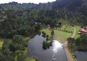 En la finca El Espinero, Tecpán Guatemala, Chimaltenango, existen al menos 180 mil árboles de pinabete sembrados. (Foto Prensa Libre: Víctor Chamalé)