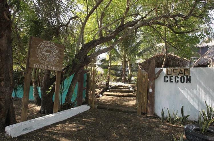 El tortugario ubicado en las playas de Monterrico  preserva iguanas, caimanes y tortugas. (Foto Prensa Libre: Carlos Hernández)