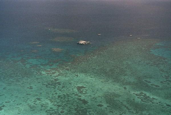 Fotografía muestra el arrecife de Agincourt, ubicado a 30 kilómetros de la Gran Barrera de Coral. (AP).