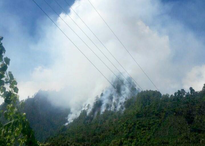 El fuego ha destruido varias hectáreas de bosque en La Libertad. (Foto Prensa Libre: Mike Castillo).