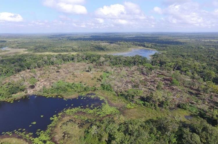 Las autoridades militares anuncian que aumentarán  operativos en áreas protegidas de la Biosfera Maya. (Foto Prensa Libre: Rigoberto Escobar)
