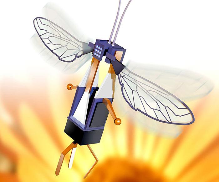 RoboBee pesa unos cien gramos. (Foto: Hemeroteca PL).