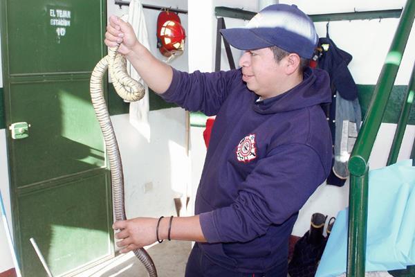 El socorrista Marco García, muestra la serpiente. (Foto Prensa Libre: Víctor Chamalé)