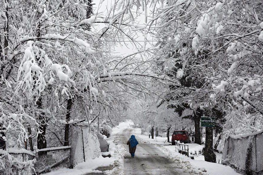 Una mujer camina bajo la nieve en un sector de Canadá. (Foto Prensa Libre: EFE).
