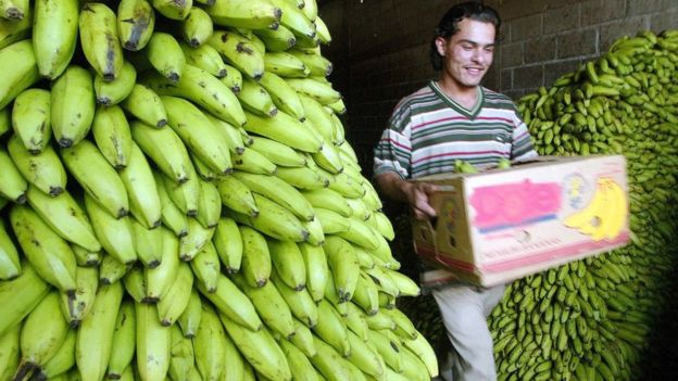 La mayoría de los hondureños no conocen la novela de O. Henry. AFP