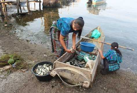 Mujeres indígenas de Santa Catarina Palopó  sacan  de un cayuco el producto para  venderlo en un mercado local.