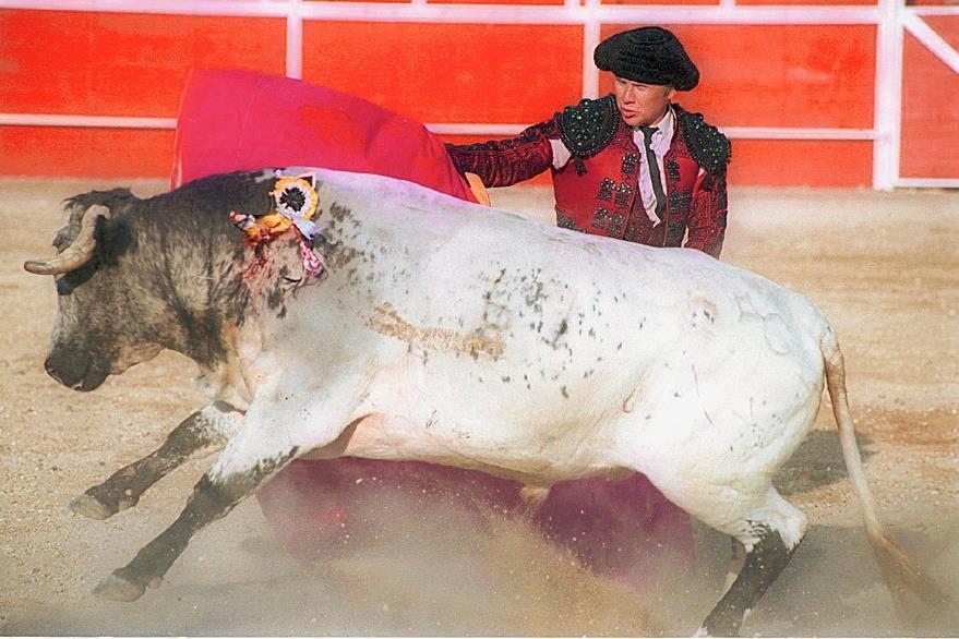 En México se prohibió el uso de animales en circos pero continúan las corridas de toros en donde matan a los ejemplares. (Foto Prensa Libre: Hemeroteca PL