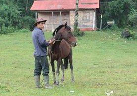 Léster Lemus explica a los asistentes la importancia de cuidar los cascos de los equinos.(Foto Prensa Libre: Yadira Montes)