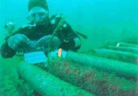 Los cables se instalan bajo el mar... pero se reparan a bordo de buques especiales y con ayuda de robots. DR K. COLLINS/SOUTHAMPTON UNIVERSITY