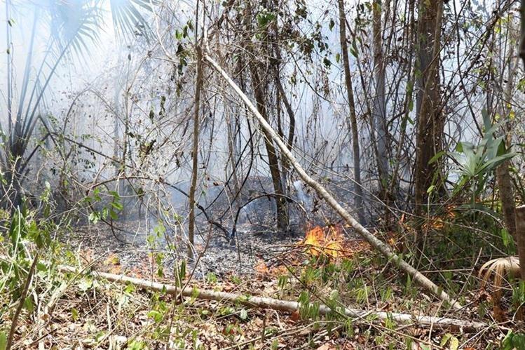 Dos incendios se reactivaron en la Reserva de la Biosfera Maya. (Foto Prensa Libre: Rigoberto Escobar)