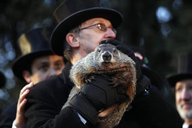 Ron Ploucha sostiene a la marmota Phil durante la celebración del día de la marmota el martes. (Foto Prensa Libre: EFE).