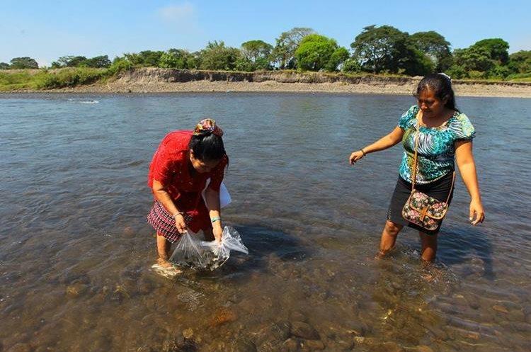 Mujeres participan en la liberación de especies nativas.