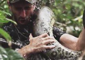"""<p>Paul Rosolie manipula una anaconda en las Amazonas. (Foto Prensa Libre: YouTube)<br _mce_bogus=""""1""""></p>"""