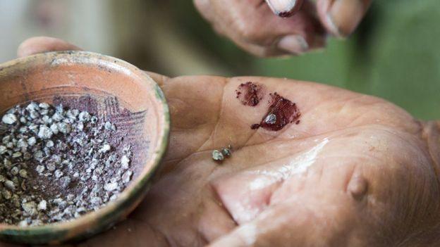A los insectos se los deja secar primero y luego se los tritura. JIM WEST/SCIENCE PHOTO LIBRARY
