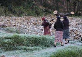 Quetzaltenango y Totonicapan registran helada.