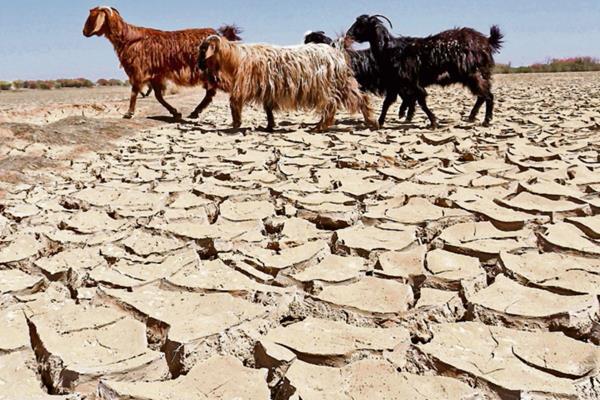 El cambio climático es la mayor amenaza de la Tierra. (Foto Prensa Libre: EFE).