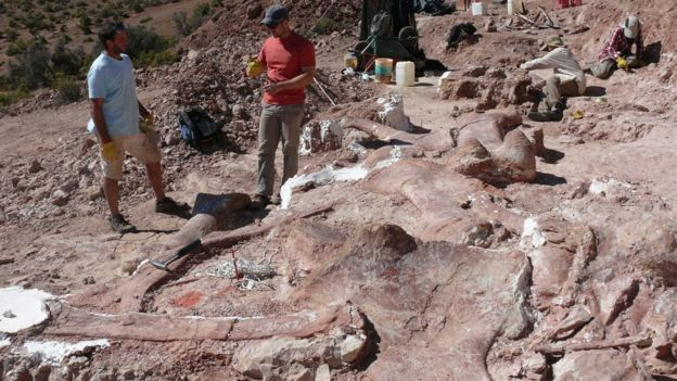 La investigación de este dinosaurio fue llevada a cabo por ocho científicos argentinos y uno estadounidense. A.GARRIDO/PA WIRE