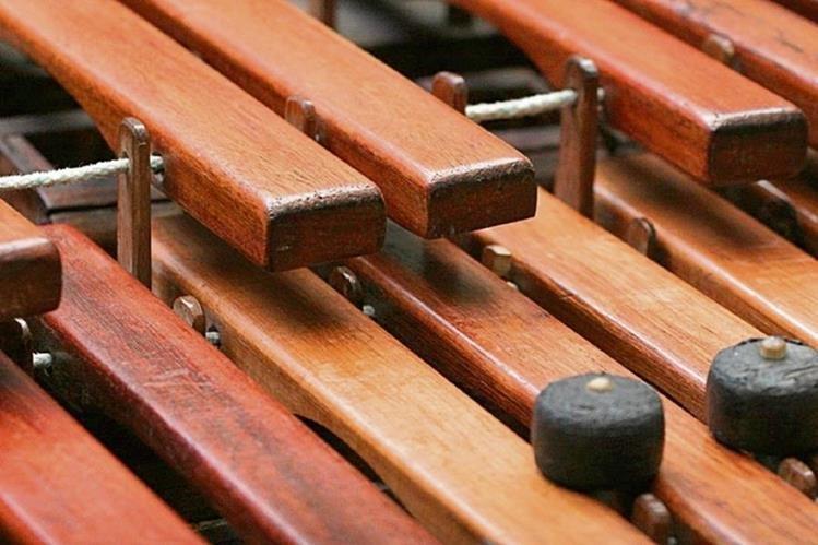 El instrumento nacional sonará en un ensamble de diez conjuntos marimbísticos de reconocida calidad interpretativa. (Foto Prensa Libre: Edwin Castro).